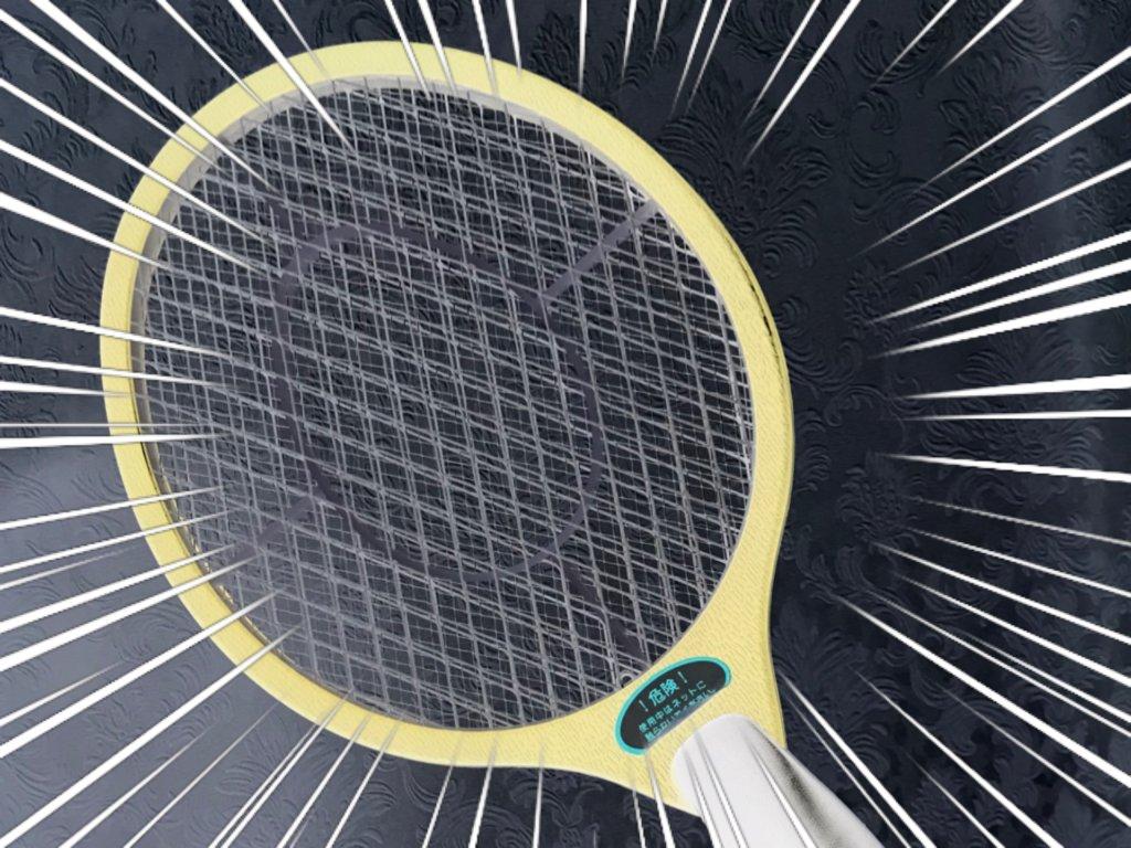日本にもあった!ブラジルで見たハエたたきラケット