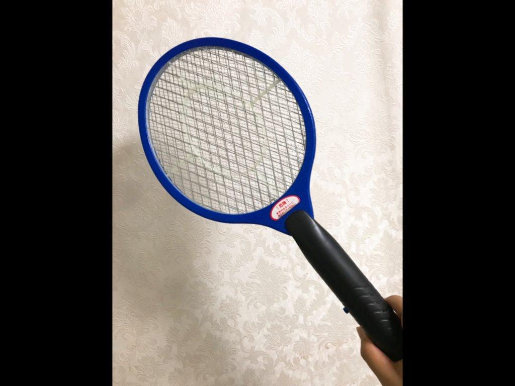 ハエたたきラケット